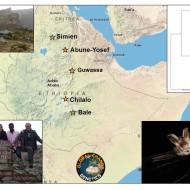 Ethiopia_project