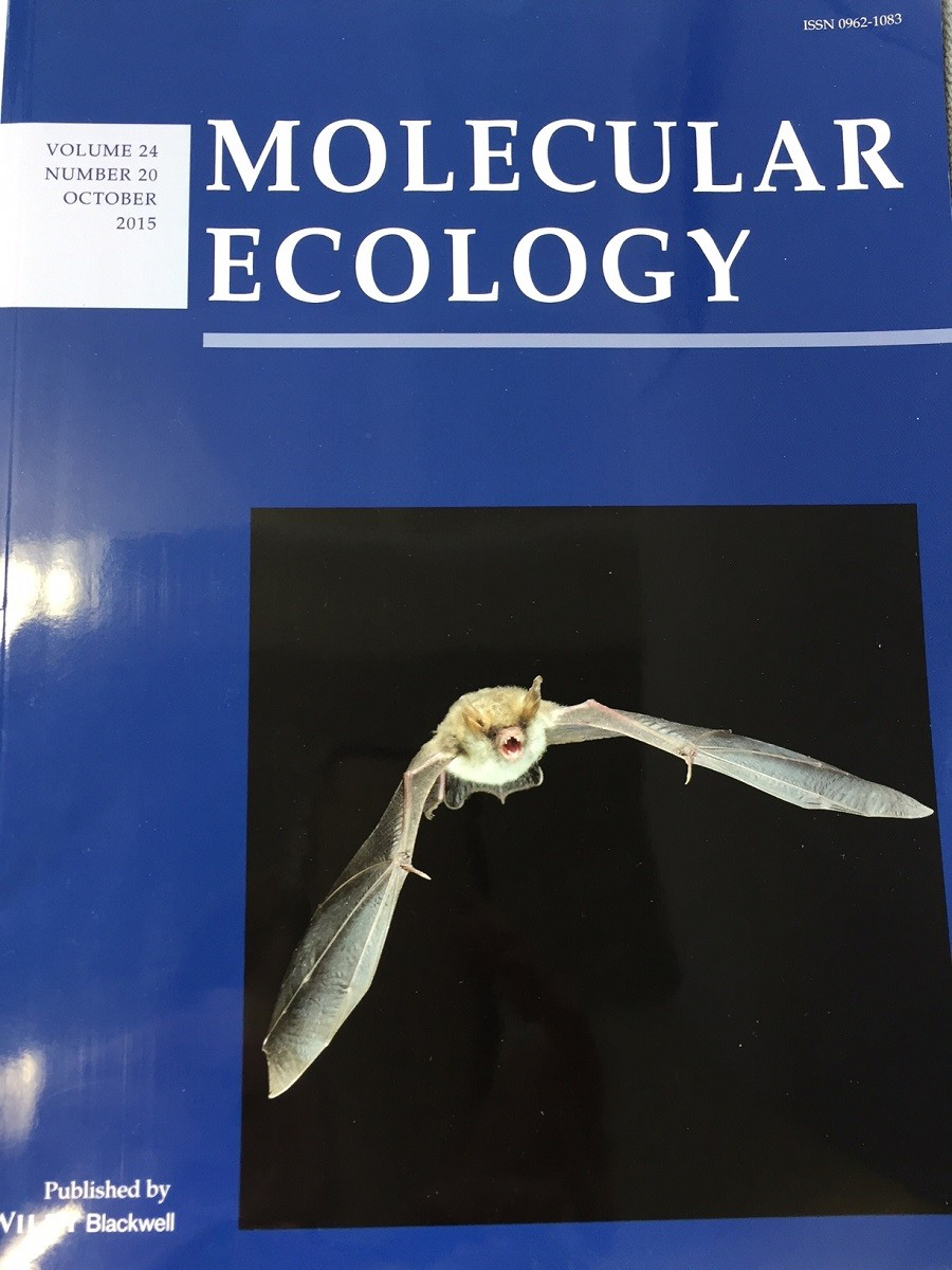 Molecular Ecology cover image_photo Antton Alberdi