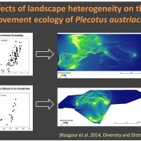 Landscape Genetics across spatial scales
