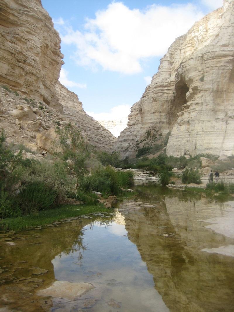 Ein Ovdat, Negev Desert